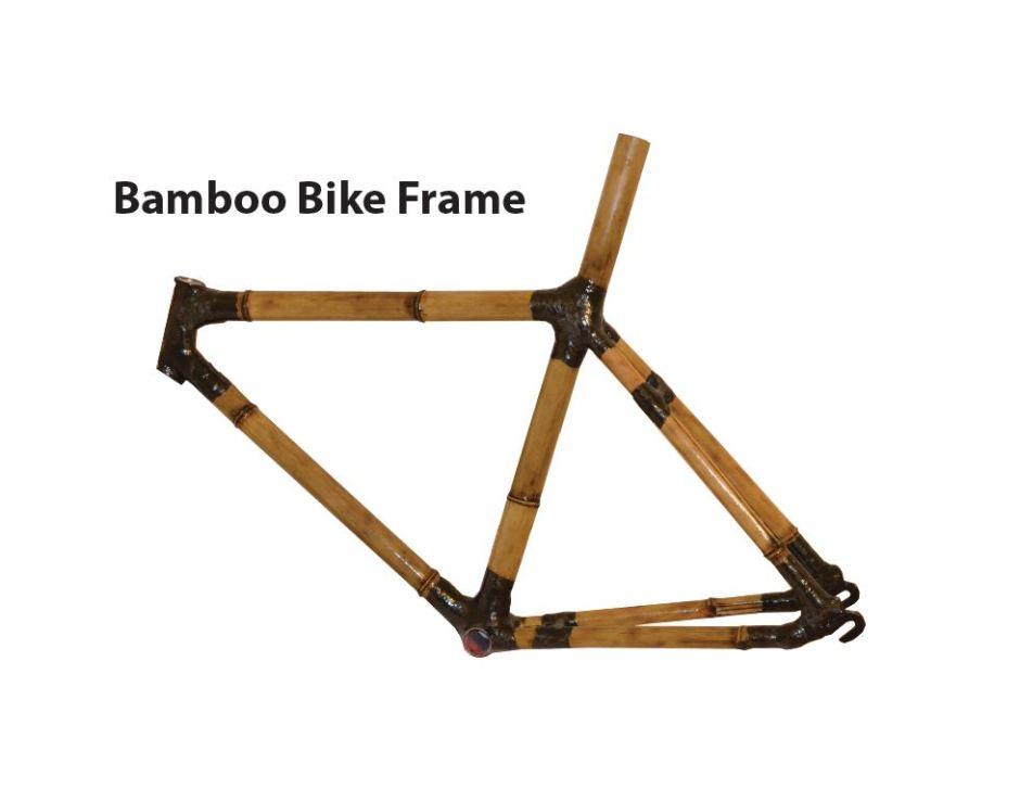 Bamboo bike 1