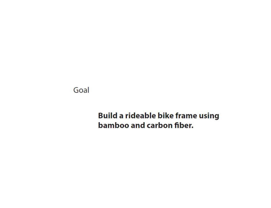 Bamboo bike 2